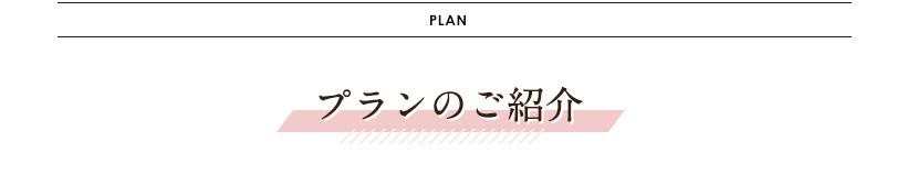 箱根・小田原エリアフォトプランの紹介